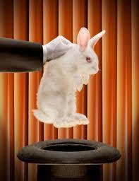 rabbitfromahat